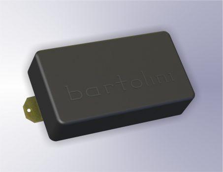 バルトリーニ
